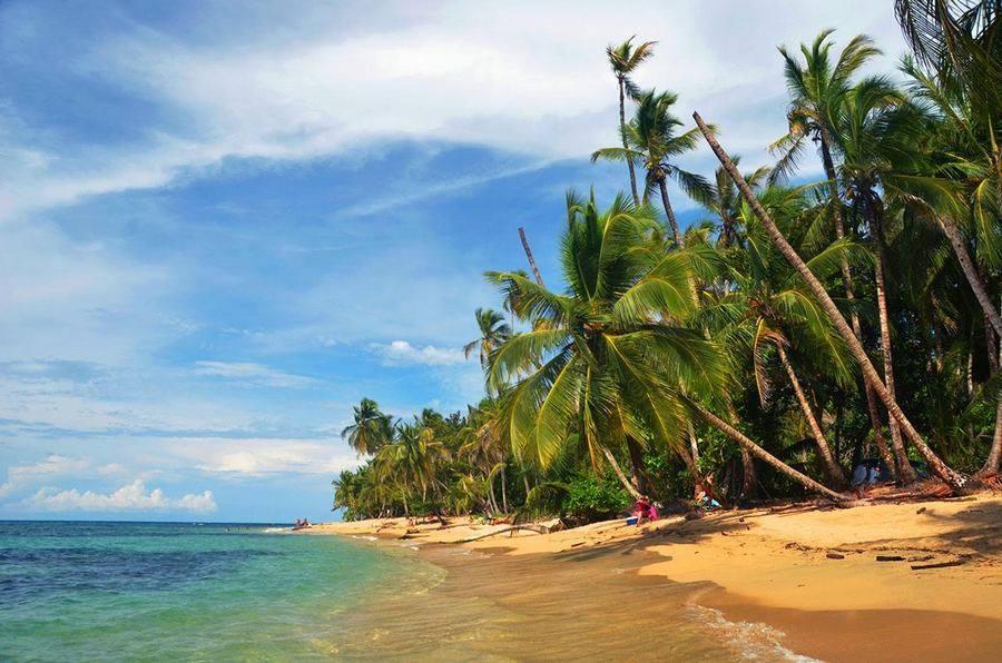 Playa Punta Uva Cahuita